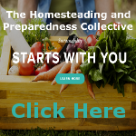 Preparedness Collective