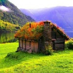 Bexar 2-26 grass-roof-home-Norway
