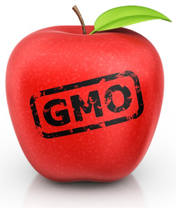 5-5 isolated-gmo-apple