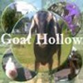 goat hollow 120