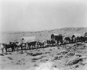 wagon_train