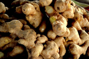 Herbs for the Gluten-Free Prepper ginger-root PD