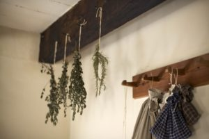 10-14-16 Drying Herbs