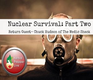 Nuclear Survival: Part Two