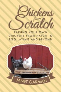 Farm Living Chickens from Scratch cover