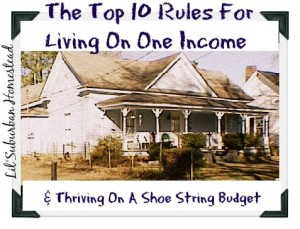 Living On One Income lilsuburbanhomesteadoldhouse