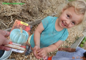 gardeners planting pumpkins with kids