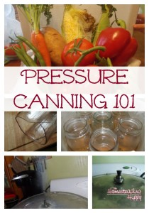 Canning, Increasing Self Sufficiency pressure-canning-101