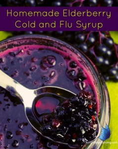 Cold & Flu Homemade-Elderberry-Syrup-by-thesoftlanding.com_