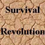 Survival Revolution