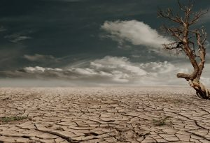 Dealing with Drought