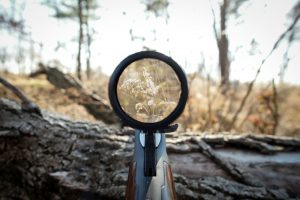 Buying your First Rifle Scope