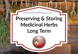 Preserve your medicinal herbs the right way