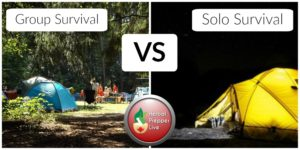 Groups Vs. Loan Wolf Survival