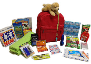Winter Survival kids -911-survival-kit-children-12-and-younger-3