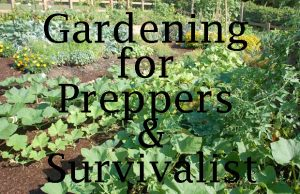 Gardening for Preppers and Survivalist