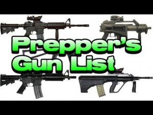 Best Guns for Preppers and Survivalist