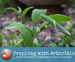 Prepping with Arthritis