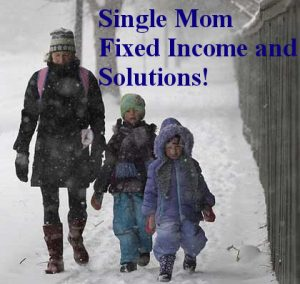 Part 2- Single Mom and Fixed Income Solutions