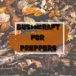 Bushcraft for Preppers: Fish Weir